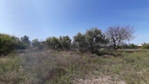 Земельный участок Луговая, Новоселки (Вышгородский), E-41297 - Фото2