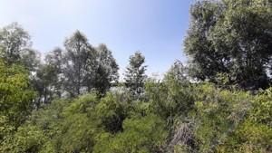 Земельный участок Садовая, Вышгород, E-41294 - Фото1