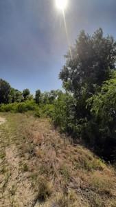 Земельный участок Луговая, Новоселки (Вышгородский), E-41300 - Фото 4
