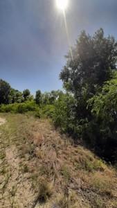 Земельный участок Луговая, Новоселки (Вышгородский), E-41301 - Фото3
