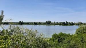 Земельный участок Набережая, Лебедевка (Вышгородский), E-41302 - Фото