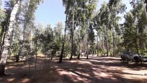 Земельный участок Набережая, Лебедевка (Вышгородский), E-41303 - Фото2