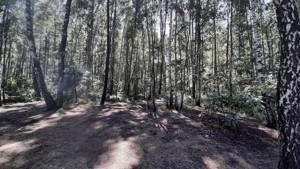 Земельный участок Набережая, Лебедевка (Вышгородский), E-41307 - Фото3