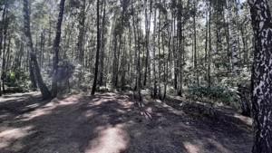 Земельный участок Набережая, Лебедевка (Вышгородский), E-41308 - Фото2