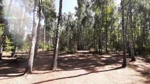 Земельный участок Набережая, Лебедевка (Вышгородский), E-41308 - Фото1
