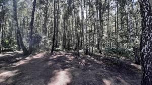 Земельный участок Набережая, Лебедевка (Вышгородский), E-41310 - Фото 1