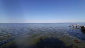 Земельный участок Набережая, Лебедевка (Вышгородский), E-41310 - Фото 8