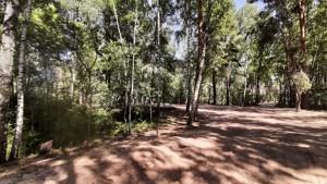 Земельный участок Набережая, Лебедевка (Вышгородский), E-41310 - Фото 9