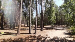 Земельный участок Набережая, Лебедевка (Вышгородский), E-41310 - Фото 12