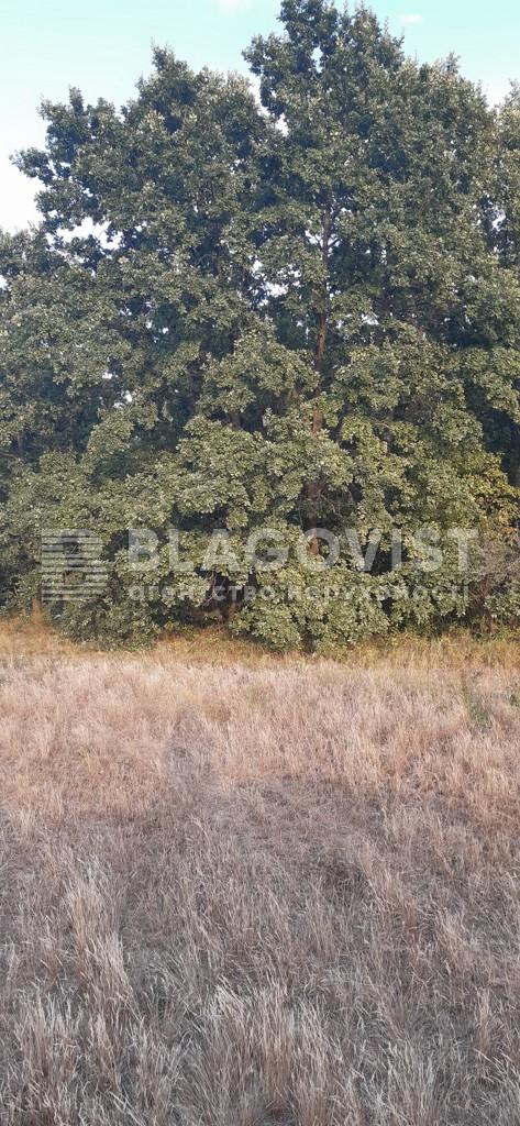 Земельный участок A-112557, Плахтянка - Фото 1
