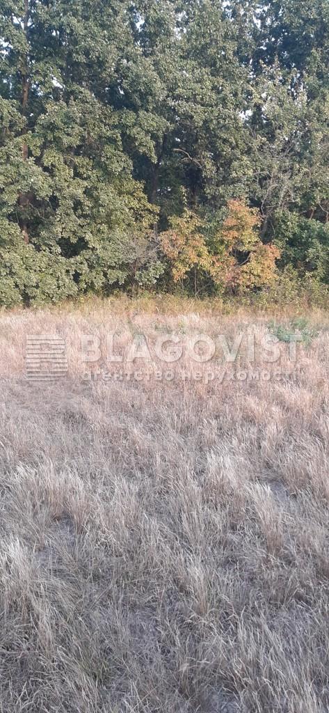 Земельный участок A-112557, Плахтянка - Фото 4
