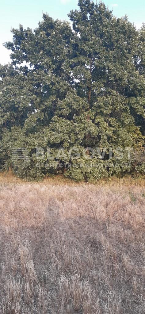 Земельный участок A-112558, Плахтянка - Фото 1