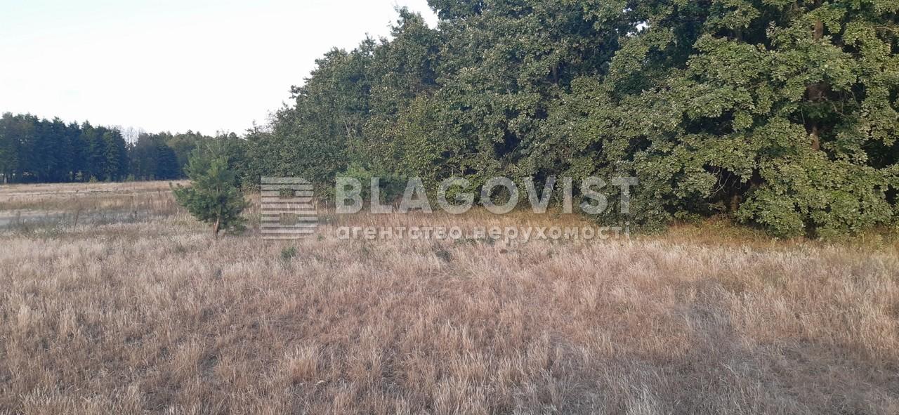 Земельный участок A-112558, Плахтянка - Фото 3