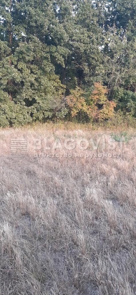 Земельный участок A-112558, Плахтянка - Фото 4