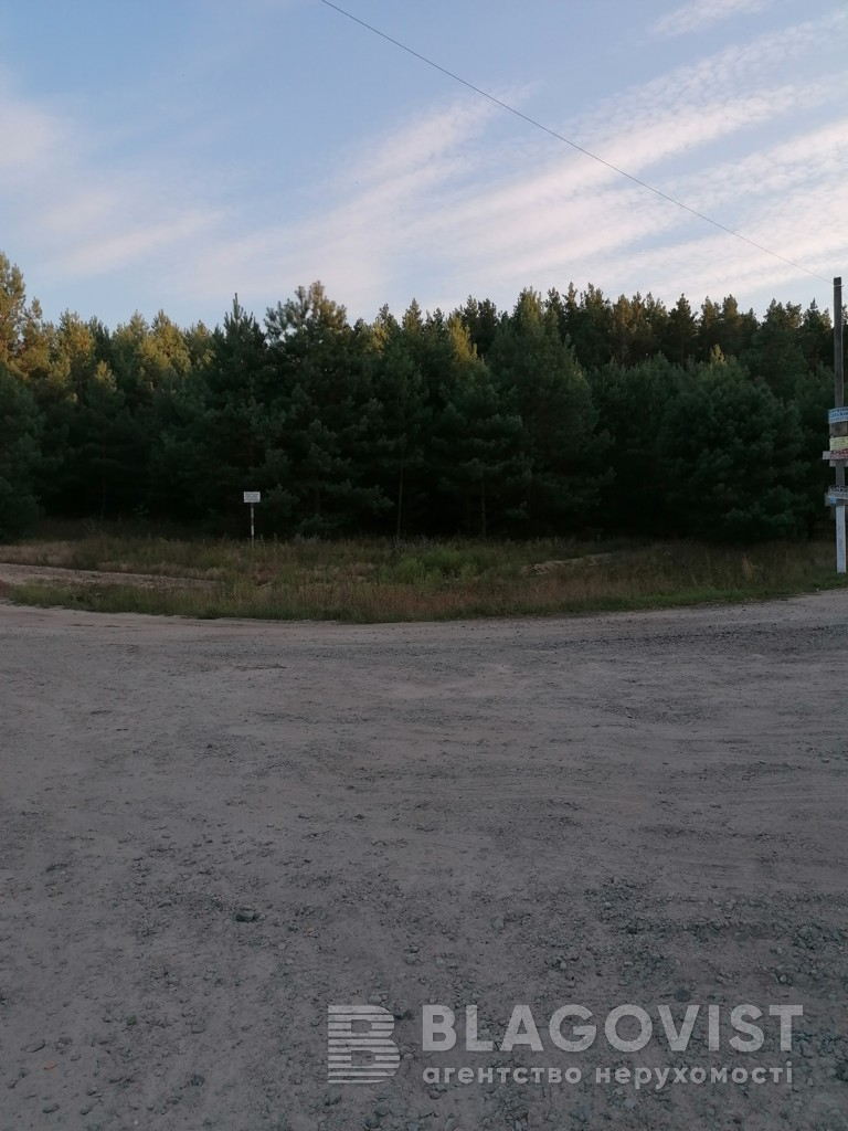 Земельный участок A-112557, Плахтянка - Фото 9