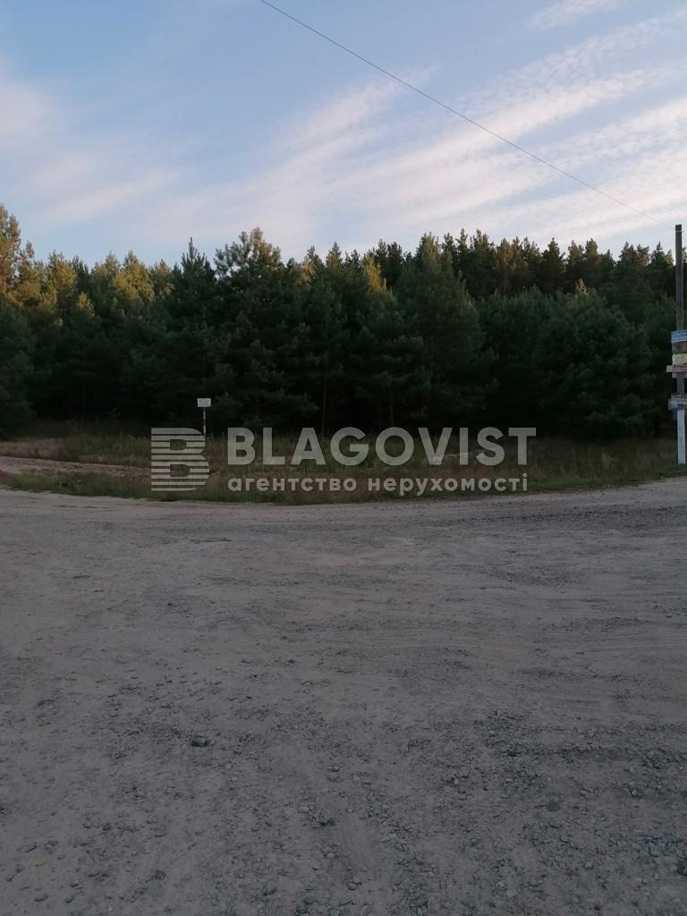 Земельный участок A-112558, Плахтянка - Фото 11