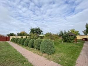 Будинок Шевченка, Лебедівка (Вишгородський), C-109938 - Фото 48