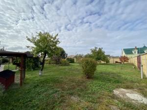 Будинок Шевченка, Лебедівка (Вишгородський), C-109938 - Фото 59