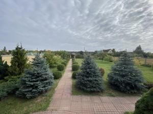 Будинок Шевченка, Лебедівка (Вишгородський), C-109938 - Фото 62