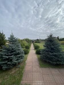Будинок Шевченка, Лебедівка (Вишгородський), C-109938 - Фото 63