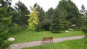 Будинок Старокиївська, Козин (Конча-Заспа), H-50751 - Фото 15