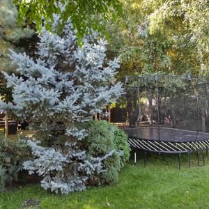 Будинок Лесі Українки, Старі Петрівці, M-39597 - Фото 64