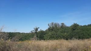 Земельный участок Лесники (Киево-Святошинский), E-41426 - Фото 5