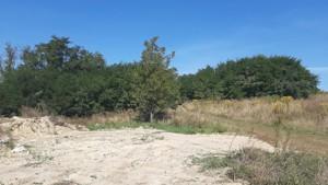 Земельный участок Лесники (Киево-Святошинский), E-41426 - Фото 7