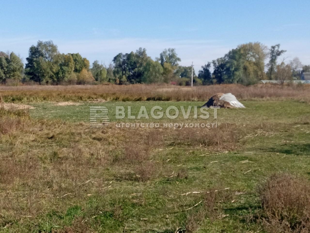 Земельный участок A-112633, Требухов - Фото 6