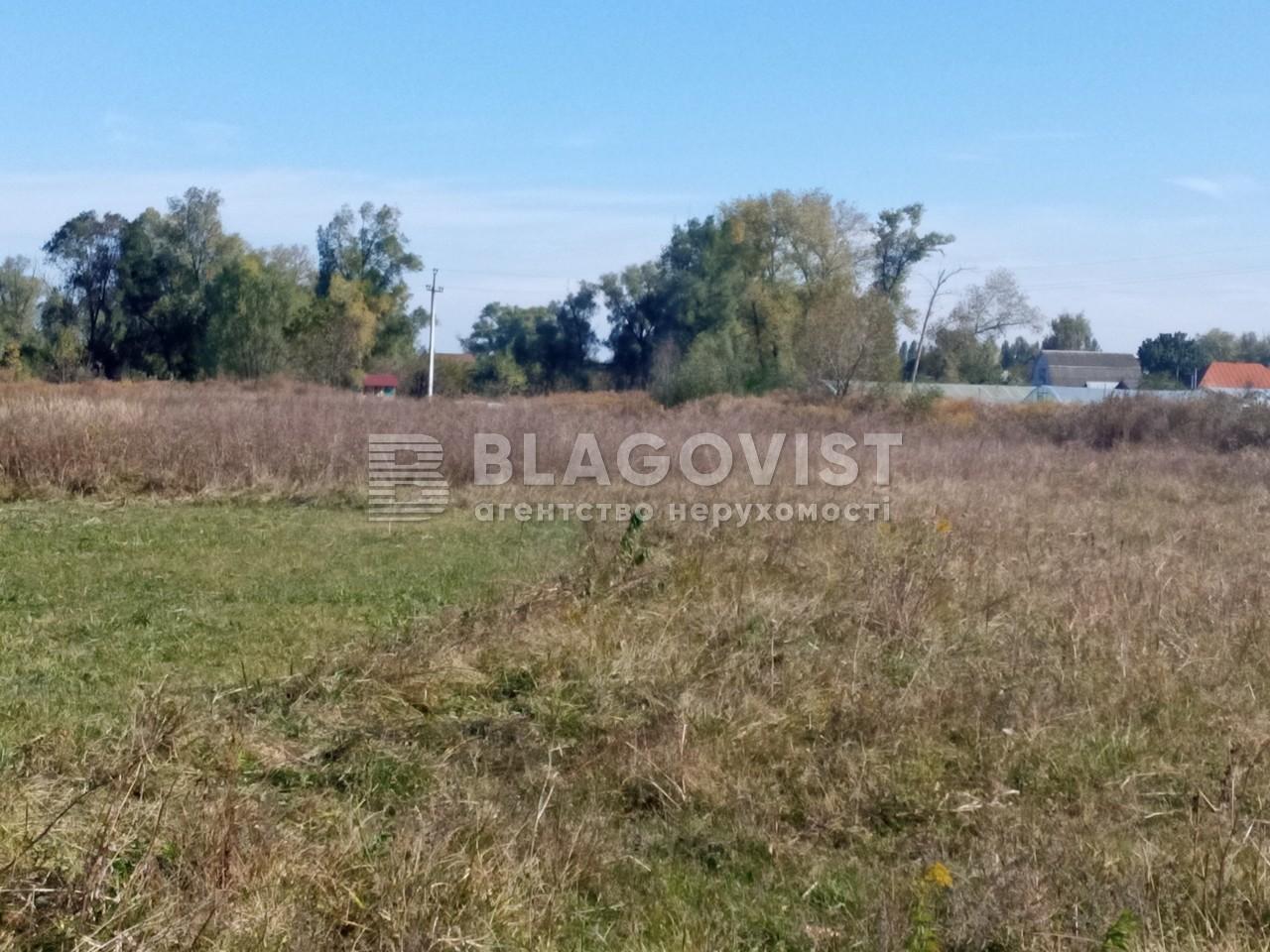 Земельный участок A-112633, Требухов - Фото 4