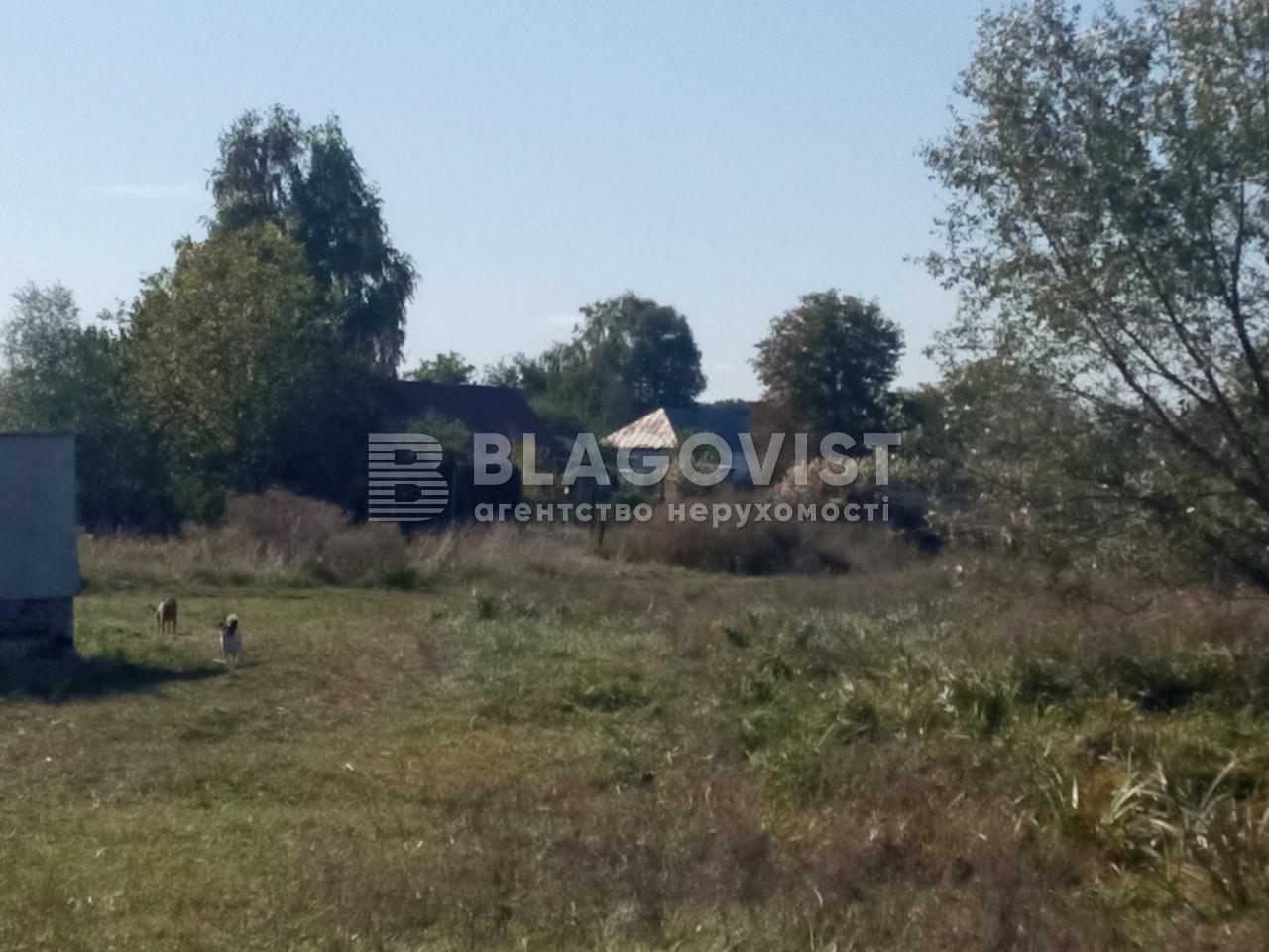 Земельный участок A-112633, Требухов - Фото 8