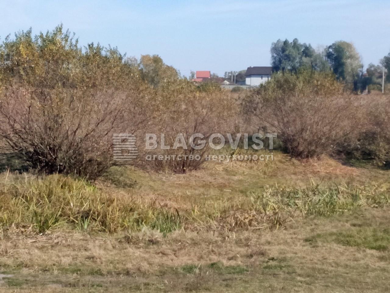 Земельный участок A-112633, Требухов - Фото 9