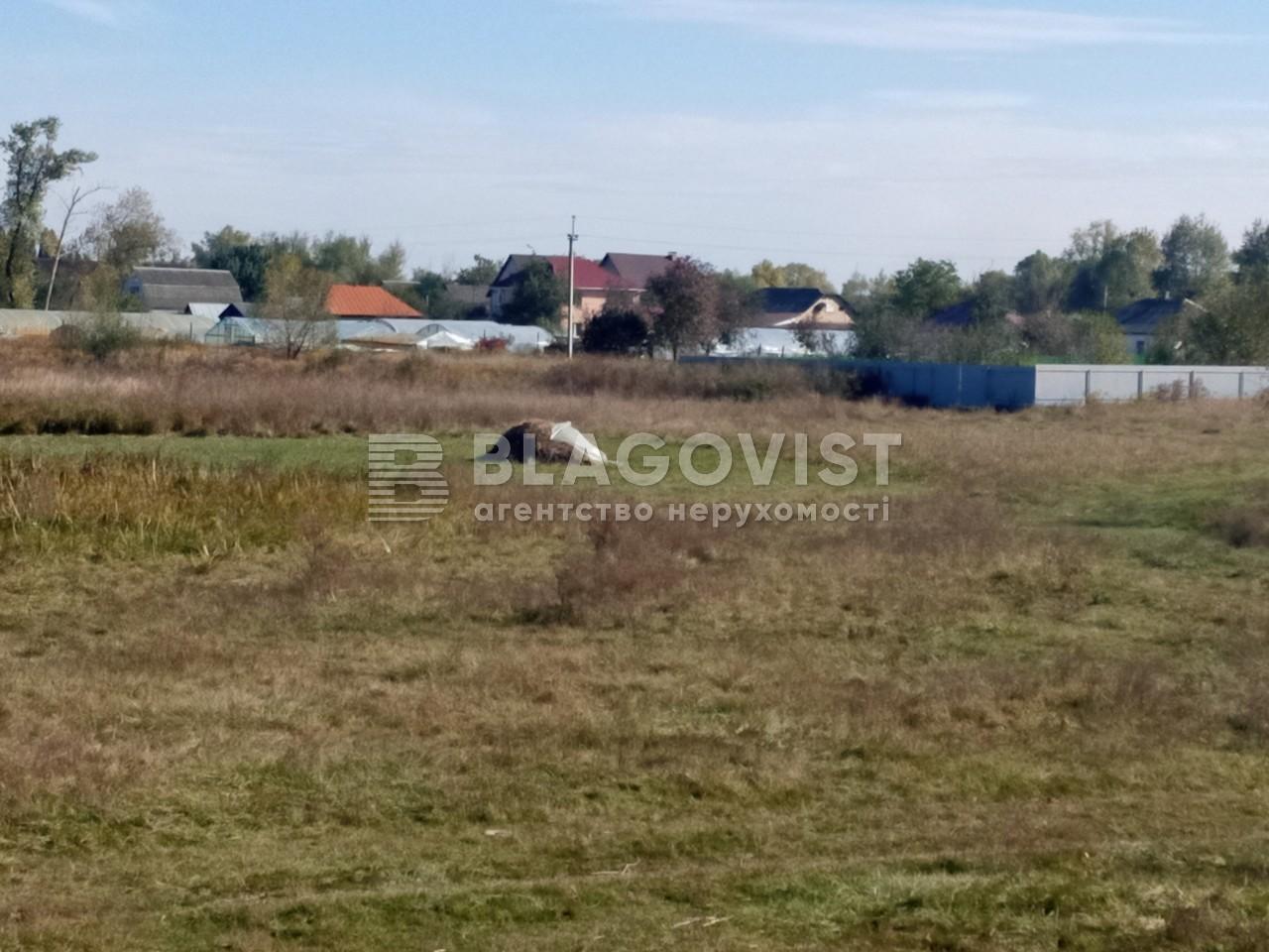 Земельный участок A-112633, Требухов - Фото 10
