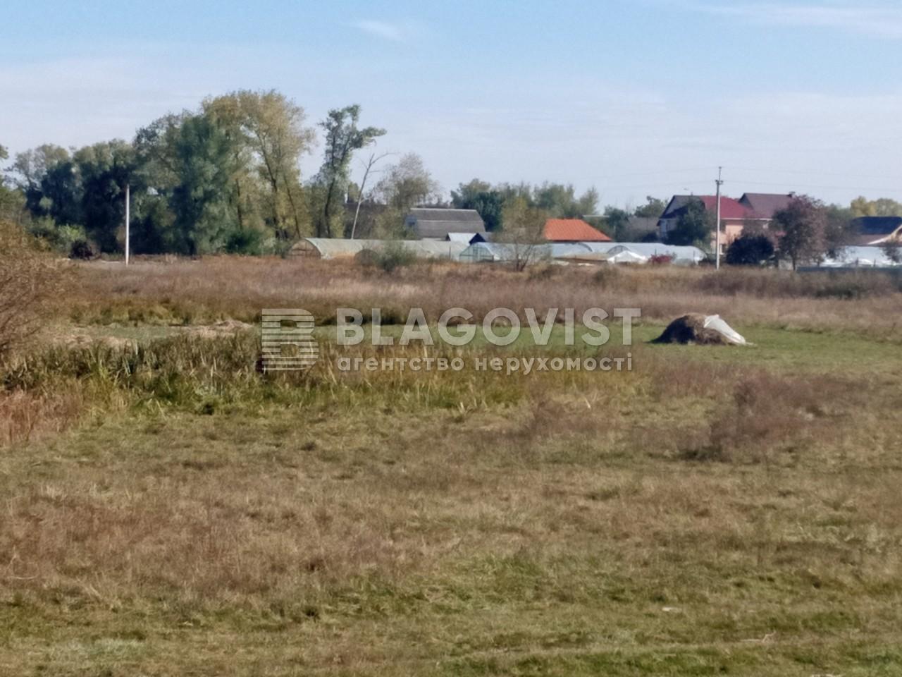 Земельный участок A-112633, Требухов - Фото 11