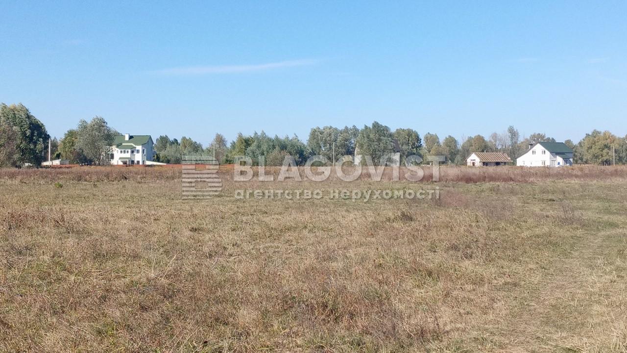 Земельный участок A-112633, Требухов - Фото 12