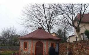 Дом Садовая (Осокорки), Киев, B-84726 - Фото 4