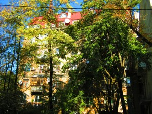 Квартира M-22971, Ярославов Вал, 30а, Киев - Фото 2