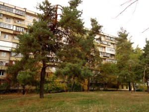 Нежитлове приміщення, Курчатова Академіка, Київ, F-41821 - Фото