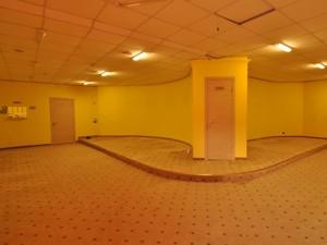 Нежилое помещение, Большая Васильковская, Киев, X-17449 - Фото3