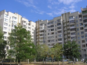 non-residential premises, Draizera Teodora, Kyiv, R-21984 - Photo