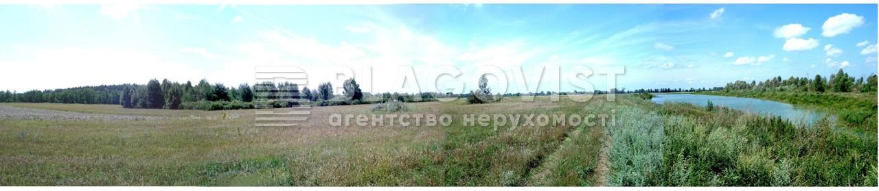 Земельный участок X-30801, Летки - Фото 2