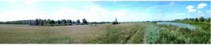 Земельный участок Летки, X-30801 - Фото 2