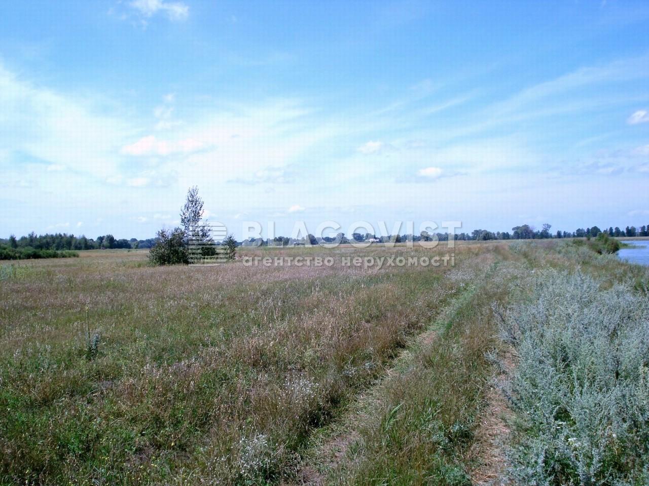 Земельный участок X-30801, Летки - Фото 4