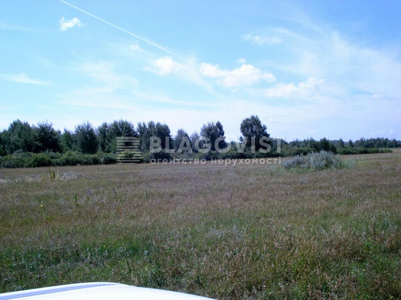 Земельный участок X-30801, Летки - Фото 5