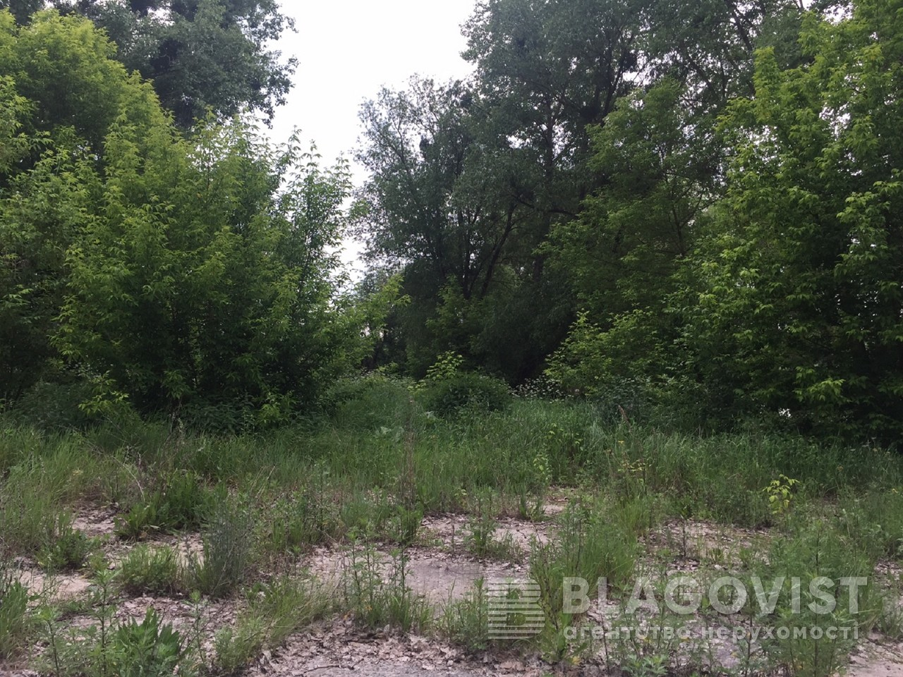 Земельный участок M-29303, Ясногородка (Макаровский) - Фото 6