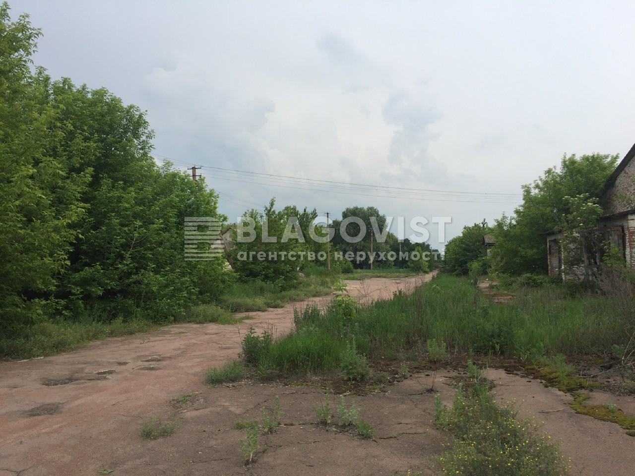 Земельный участок M-29303, Ясногородка (Макаровский) - Фото 9