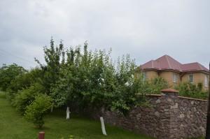Будинок В.Олександрівка, Z-1808140 - Фото 11
