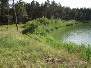 Земельна ділянка Українка, I-24497 - Фото 7