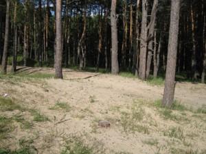 Земельна ділянка Українка, I-24497 - Фото 9