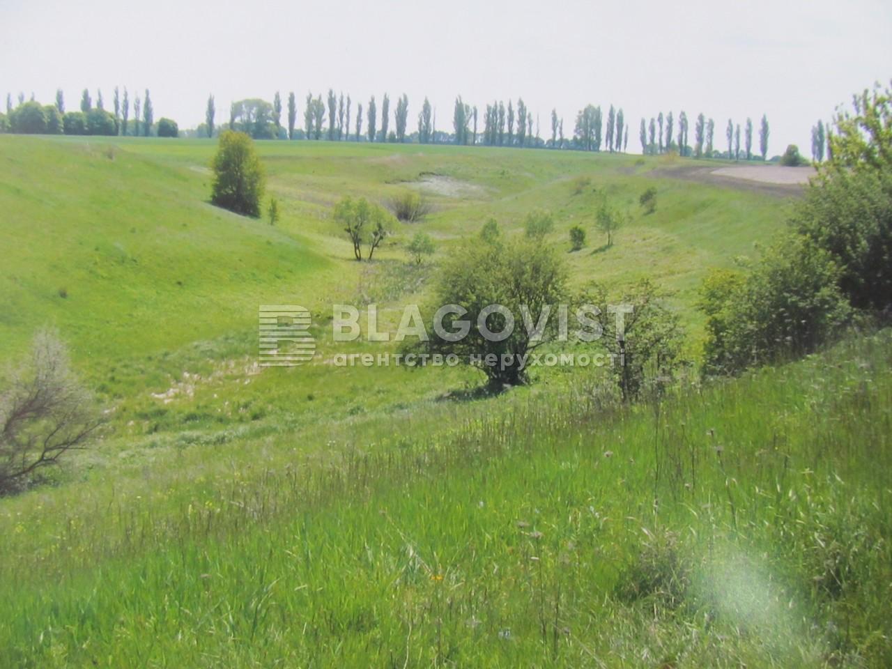Земельный участок F-35987, Ржищев - Фото 6